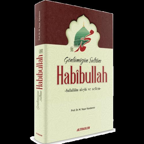 HABIBULLAH-500×500-1.png